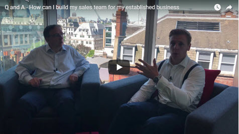 How Can I Build My Sales Team For My Established Business?